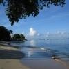 Paynes Bay Beach